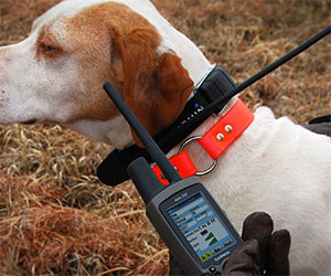GPS Dog Tracking Collar
