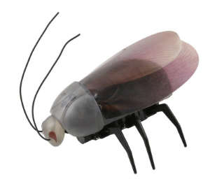 iPhone/iPad Controlled Beetle Insect