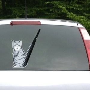 Moving Cat Tail Window Wiper