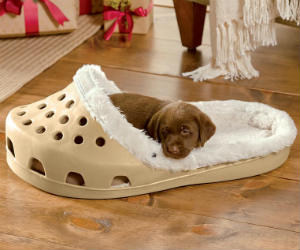 Shoe Small Pet Bed