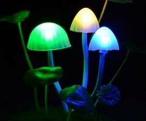 avatar glowing mushroom lights