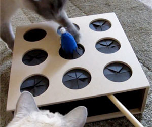 Whack-A-Mouse Cat Toy