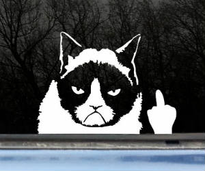 grumpy cat finger sticker car