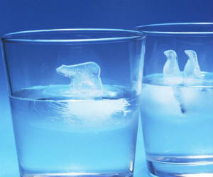 Penguin polar bear ice cubes