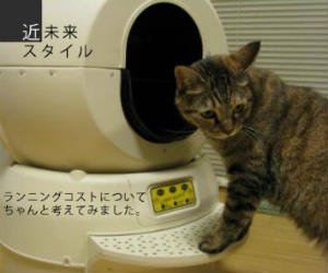 robot cat litter