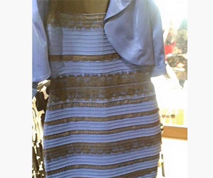 gold white-or blue black dress