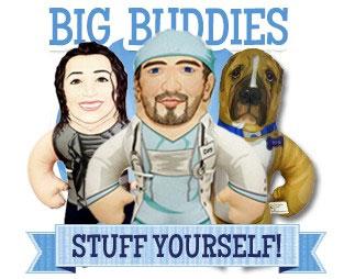 big buddies pillows