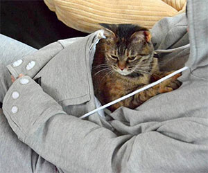 cat hoodie pouch