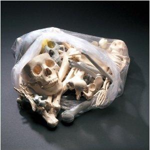 Bags of Bones