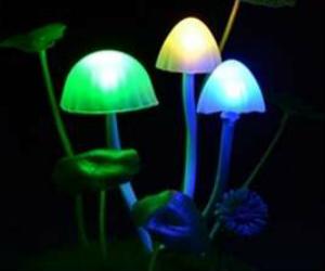 Avatar Solar Mushroom Lamp