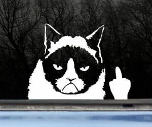 Grumpy Cat Finger