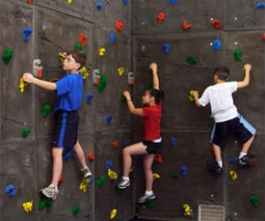 Rock Traverse Climbing Wall