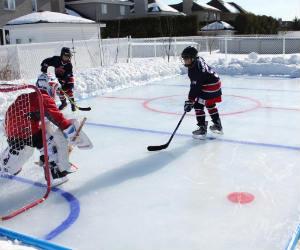 Ice Hockey Rink Kit