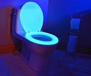 Neon Toilet Seat