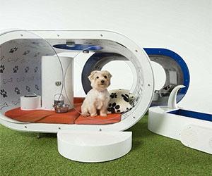 futuristic dog kennel